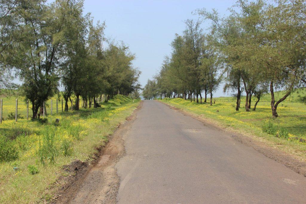Road to kaas Plateau
