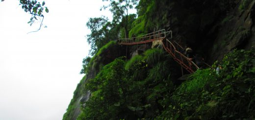 Bhimashankar ladder