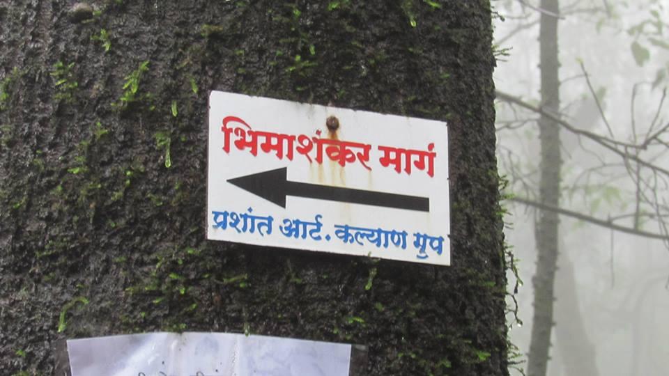 Board to Bhimashankar