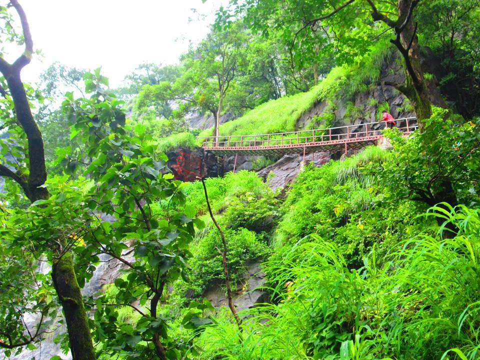Ladder 3 Bhimashankar