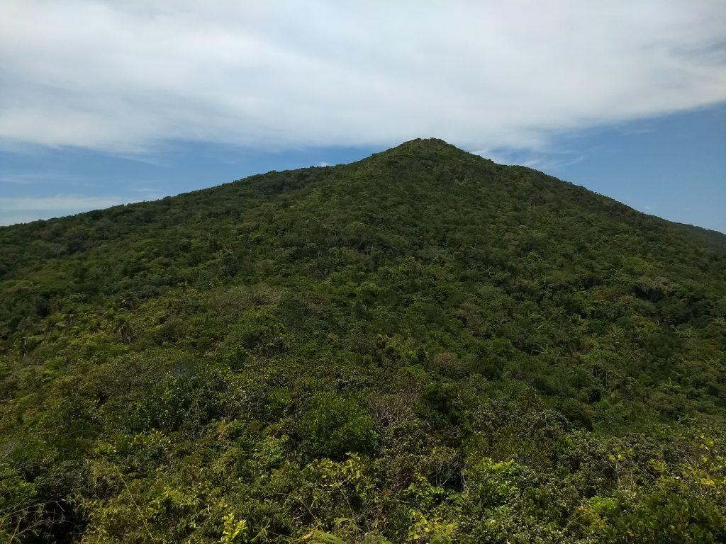 Saddle Peak top