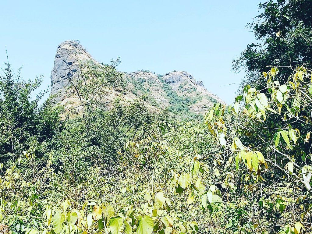 Walk to Tandulwadi Fort